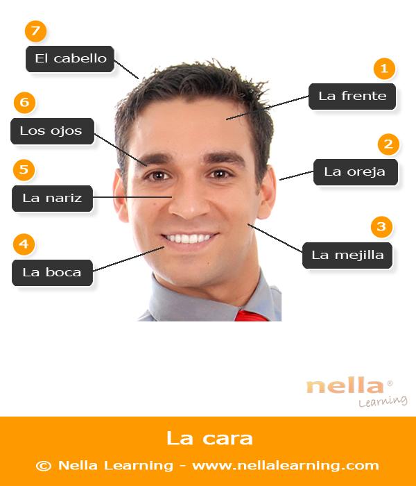 Mot espagnol pour le sexe